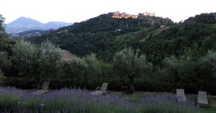 Cardaneto Terrace
